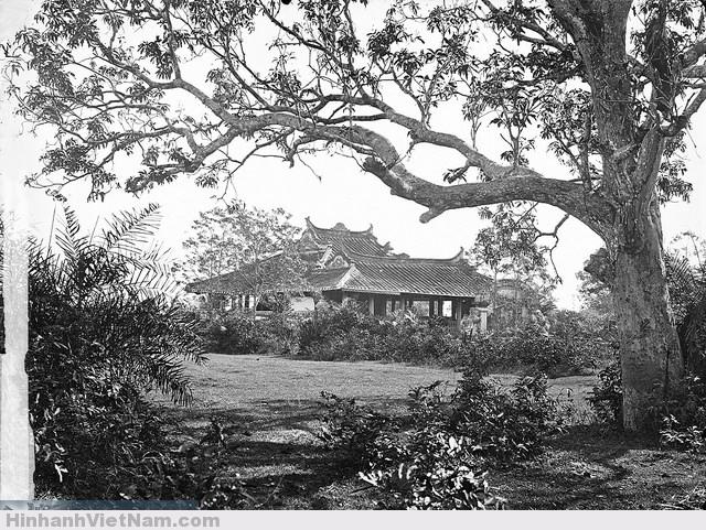 SAIGON 1867 - Lăng Cha Cả  Cây lớn tro