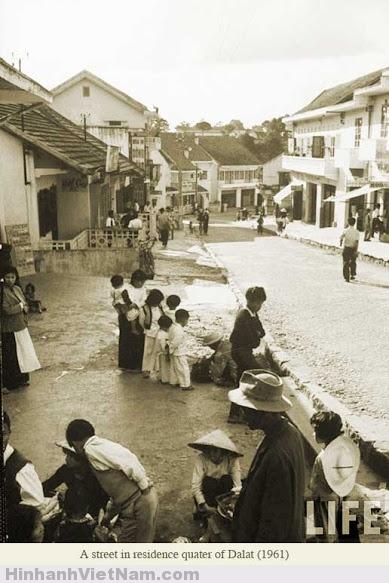 Một con đường trên phố Đà Lạt