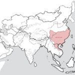 Nước Việt cổ rộng gấp 10 lần bây giờ!
