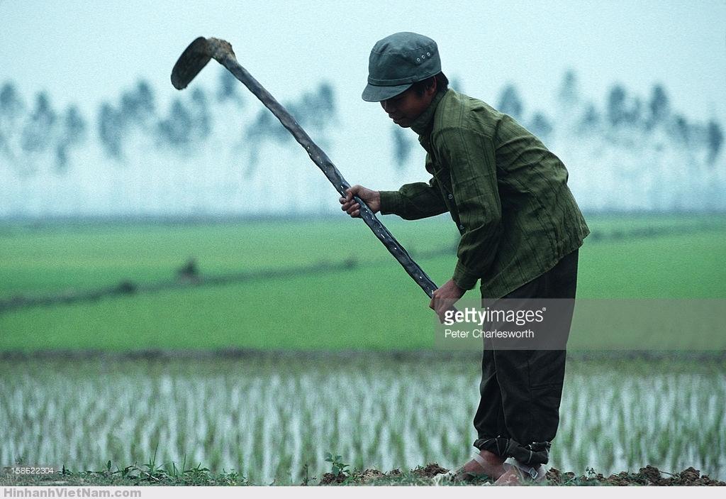 Ảnh cực chất về cuộc sống ở Hà Nội năm 1992
